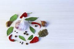 Fond clair avec les épices aromatiques Ail, feuille de laurier, piment, photo stock