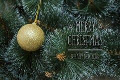 Fond coloré avec l'arbre de Noël décoré Photo libre de droits