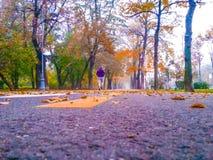 Fond coloré avec la rue Images stock