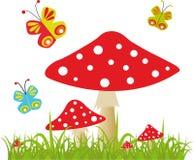 Fond coloré avec le papillon et l'amanite Image stock