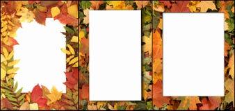 Fond coloré d'automne Photo libre de droits