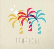 Fond coloré de concept d'été de palmier Photos stock