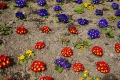 Fond coloré de pensée de fleur Photographie stock