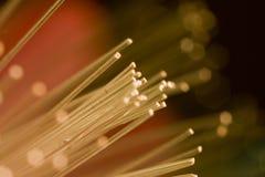 Fond coloré de technologie de fibre optique Images libres de droits