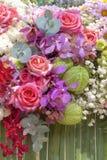 Fond coloré frais de fleurs Photos libres de droits