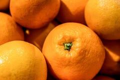 Fond coloré, frais et juteux d'oranges photographie stock libre de droits