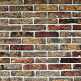 Fond coloré multi de briques Photos stock