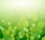 Fond coloré par doux d'abrégé sur vert d'eco Images libres de droits