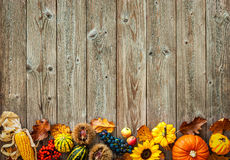 Fond coloré pour Halloween et thanksgiving Images stock