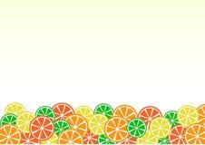 Fond color? de citron Citron, chaux, orange, pamplemousse Vecteur illustration libre de droits