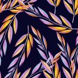 Fond composé de maigre multicolore dans les aquarelles Image libre de droits
