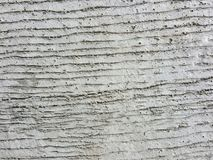fond concret approximatif de route de texture de ciment Photos stock
