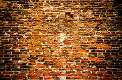 Fond concret criqué de mur de cru, vieux mur Photos stock