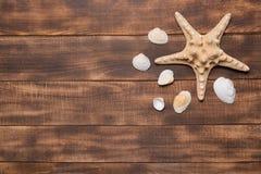 Fond, coquillages et étoiles de mer d'été sur les conseils en bois photos libres de droits