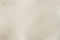 Fond crème blanc ou texture de cuir véritable de peinture Pour le fond, contexte, substrat, utilisation de composition avec Photos stock
