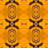 Fond créé des ailes de papillon Images stock