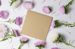Fond créatif avec des fleurs de chrysanthème et de dahlia Concept floral de configuration d'appartement de frontière Photographie stock