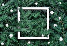 Fond créatif de branche de pin avec le cadre de livre blanc Concept de nouvelle année et de Joyeux Noël photos libres de droits