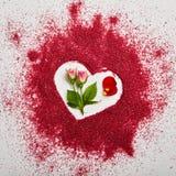 Fond créatif de jour de valentines Photos libres de droits