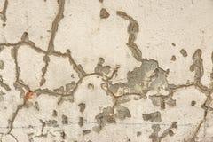 Fond criqué de détail de mur en béton Photo stock