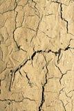 Fond criqué de terre grasse Photographie stock