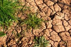 Fond criqué sec de la terre photo stock