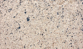 Fond criqué sec de la terre de plan rapproché, texture de désert d'argile Photo libre de droits
