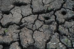 Fond criqué sec de texture de la terre Modèle criqué de sol ou de boue, surface de terre de sécheresse image stock