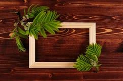 Fond décoratif d'été de cadre en bois vide et jeunes feuilles vertes sur le conseil en bois de brun de vintage Copiez l'espace, v photo stock