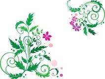 Fond décoratif de fleur Photo libre de droits