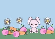 Fond décoratif de Pâques avec le fruit, les fleurs et le lapin Approprié à la conception de carte postale illustration de vecteur