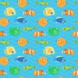 Fond décoratif sans couture des poissons tropicaux multicolores Image libre de droits