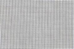 Fond d'écran d'insecte photo stock