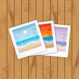 Fond d'été Photos libres de droits
