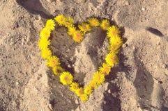 Fond d'été avec des pissenlits dans une forme de coeur sur le sable Image stock