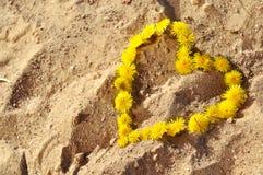 Fond d'été avec des pissenlits dans une forme de coeur sur le sable Photos stock