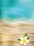 Fond d'été avec la fleur et le filet Photo stock