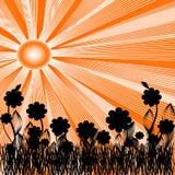 fond d'été avec le soleil et la silhouette du flux Photo libre de droits