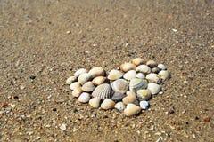 Fond d'été Coeur fait de coquilles sur la plage sablonneuse Photographie stock libre de droits