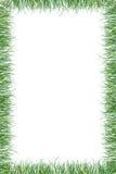 Fond d'été de papier d'herbe verte Photographie stock libre de droits