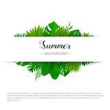 Fond d'été Illustration de vecteur Calibre pour des bannières, bons, remise feuille 3d sur le blanc Endroit pour votre texte Photo stock