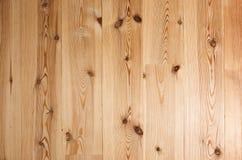 Fond d'étage de bois dur Photo libre de droits