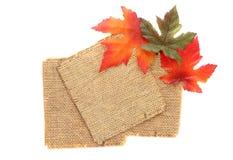 Fond d'étiquette d'automne Images stock