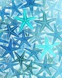 Fond d'étoiles de mer photos stock