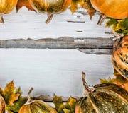 Fond d'action de grâces Potirons sur un fond en bois blanc L'espace libre pour le texte Vue de ci-avant Photographie stock