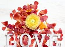 Fond d'AMOUR de fleurs et de lettres de Ranunculus Photographie stock libre de droits