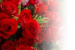 Fond d'amour de mariage de rose de rouge Photos libres de droits