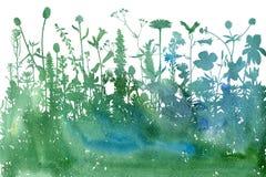 Fond d'aquarelle avec des herbes et des fleurs de dessin Photo libre de droits