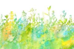 Fond d'aquarelle avec des herbes et des fleurs de dessin Photographie stock libre de droits
