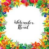 Fond d'aquarelle avec des plantes tropicales et des fleurs illustration stock